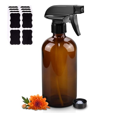 Worldgsb Glass Spray Bottle