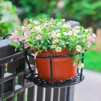 HowRU Iron Plant Hanging Baskets (Pack of 3)