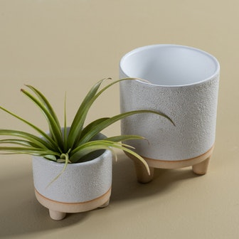Delray Footed Pot