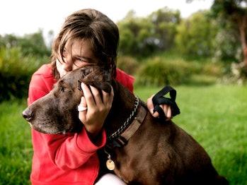 Child comforts dog