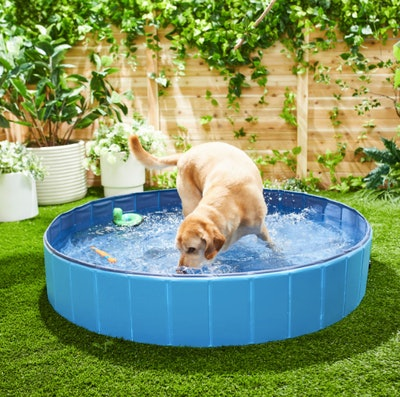 FRISCO Outdoor Swimming Pool XL