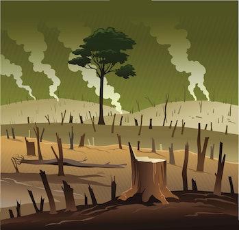 Deforestation illustration