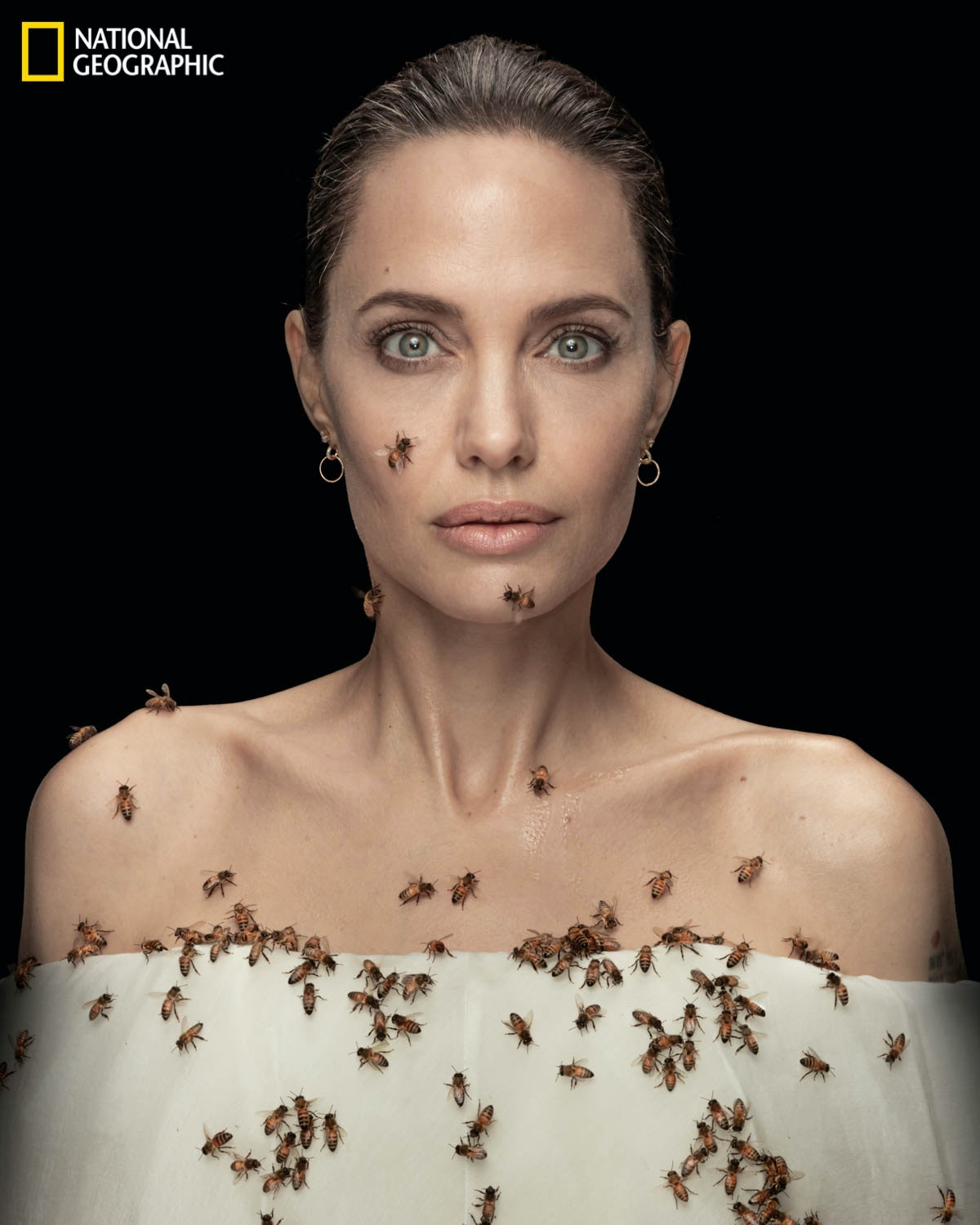 Angelina Jolie covered in bees