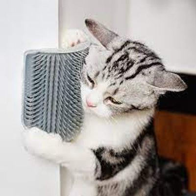 IMISNO Cat Self-Groomers (4-Pack)