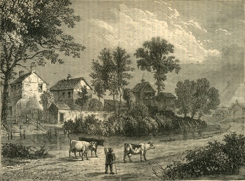illustration farm with cows and trees