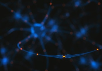 brain synapse connections