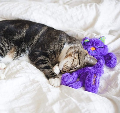 Petstages Comfort Purring Toy