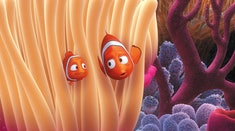 'Finding Nemo' is one of many films about dads to watch with your father this Father's Day.