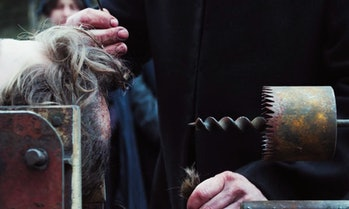 Netflix cult horror thriller Apostle