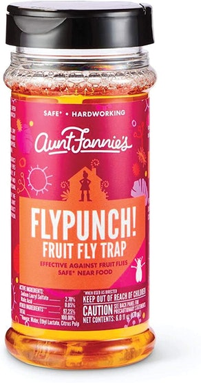 Aunt Fannie's FlyPunch Fruit Fly Trap