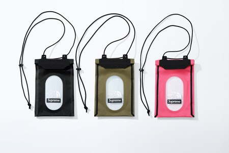 Supreme The North Face Summit Series SS20 Neck Pouch
