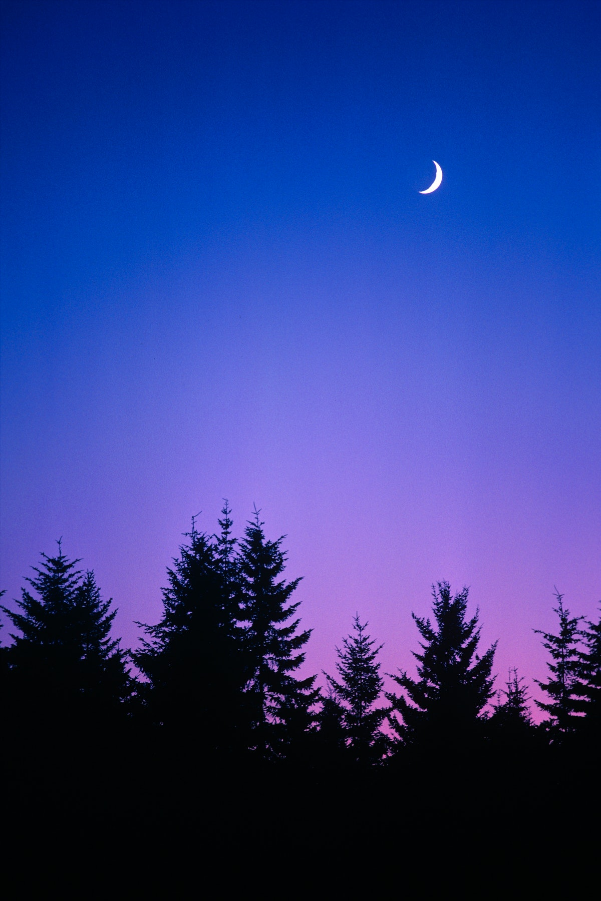 Waxing crescent moon, which is one of the eight moon phases.