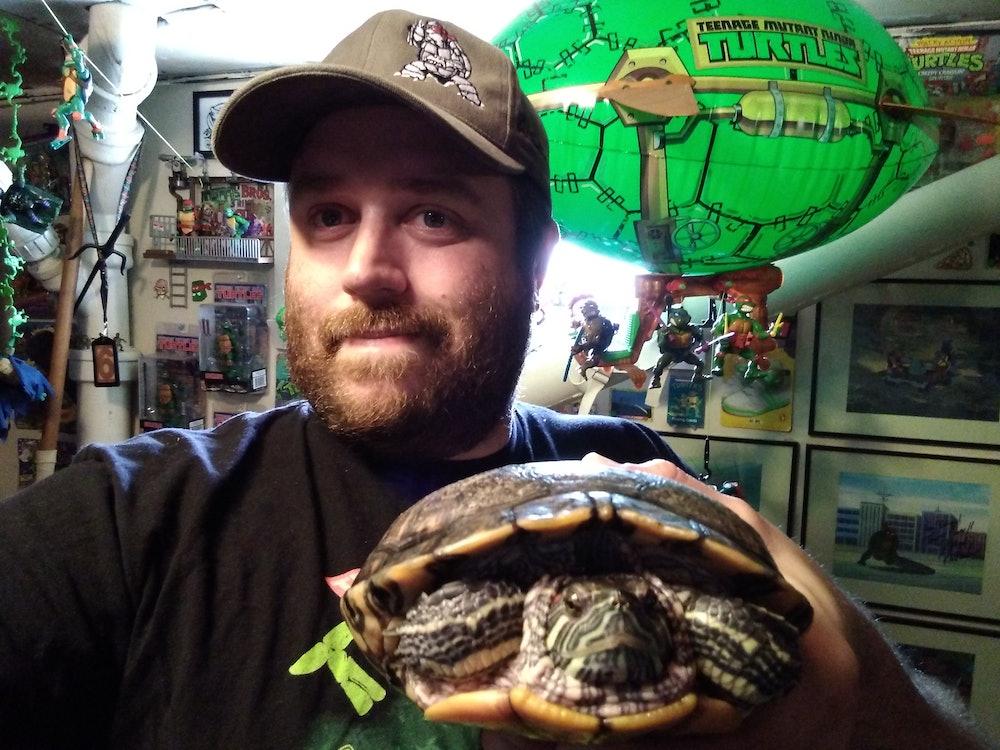 red-eared sliders turtles