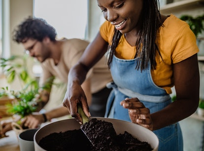 Couple potting plants as part of the 2021 home decor trend they should try, based on their zodiac si...