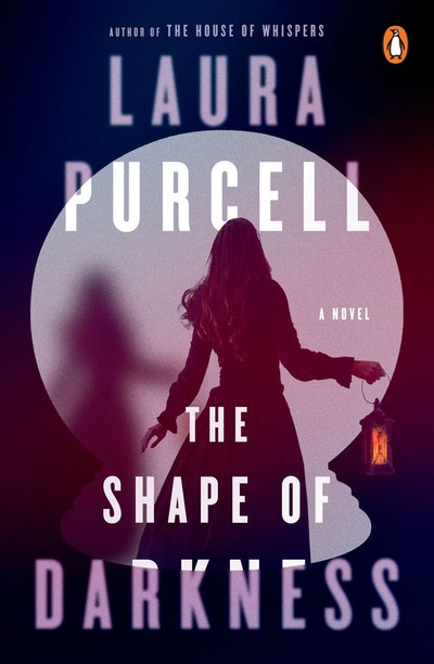 'The Shape of Darkness' by Laura Purcell