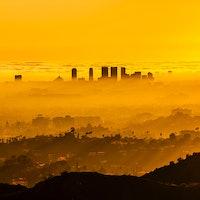 Climate crisis