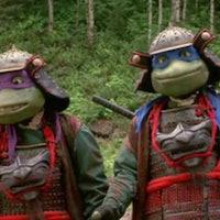 How Teenage Mutant Ninja Turtles devastated the world's turtle population