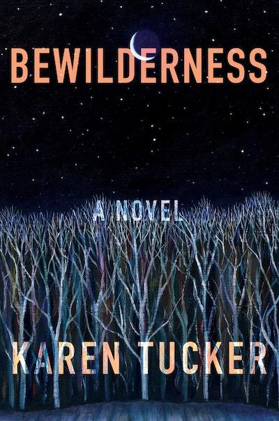 'Bewilderness' by Karen Tucker