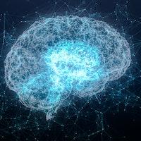 """Elon Musk's Neuralink is """"bad science fiction,"""" brain science pioneer says"""