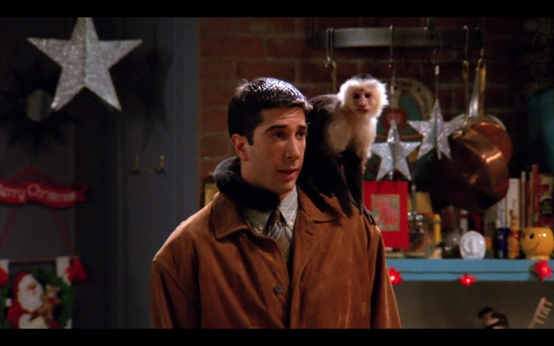 Ross (David Schwimmer) with Marcel (Katie) the capuchin monkey on his shoulder.