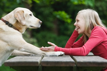 Girl plays with dog at picnic table