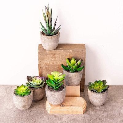 Sophia's Garden Mini Fake Artificial Succulent Plants (6-Pots)