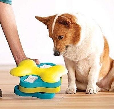 Outward Hound Dog Treat Puzzle