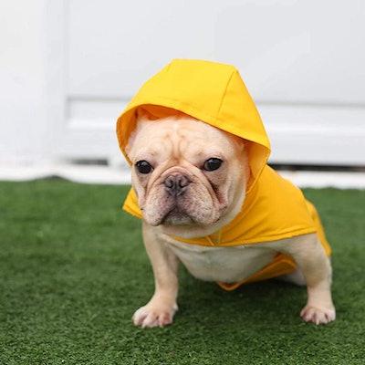 Best Pet Supplies Raincoat