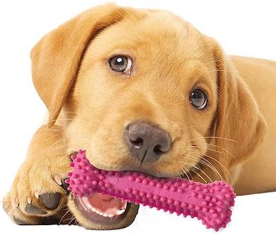 Nylabone Puppy Chew Toys (3-Pack)
