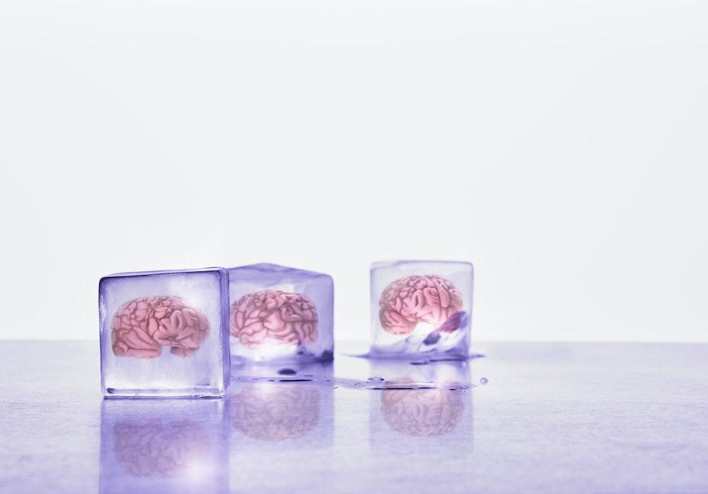 Brain frozen in ice cubes
