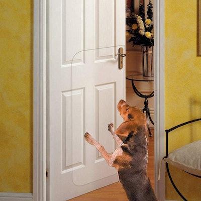 IN HAND Clear Door Scratch Protector