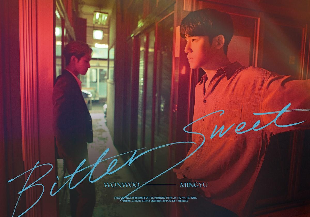 "Seventeen's Mingyu and Wonwoo's ""Bittersweet"""