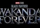 'Black Panther: Wakanda Forever'  premieres July 8, 2022.