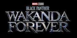 'Black Panther: Wakanda Forever'  premieres July 8, 2022.