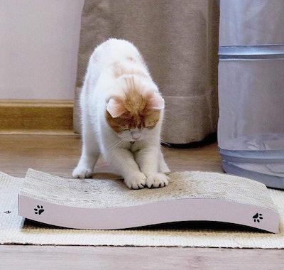 Coching Cat Scratcher