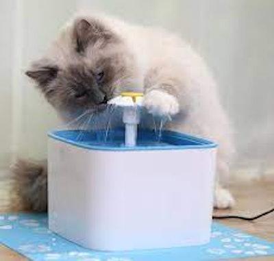 Veken Pet Water Fountain