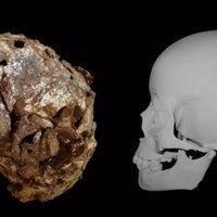 """The oldest burial in Africa  reveals """"the root"""" of a human behavior"""