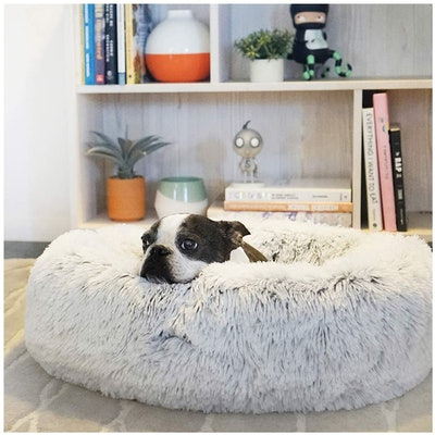 Best Friends by Sheri Calming Pet Bed