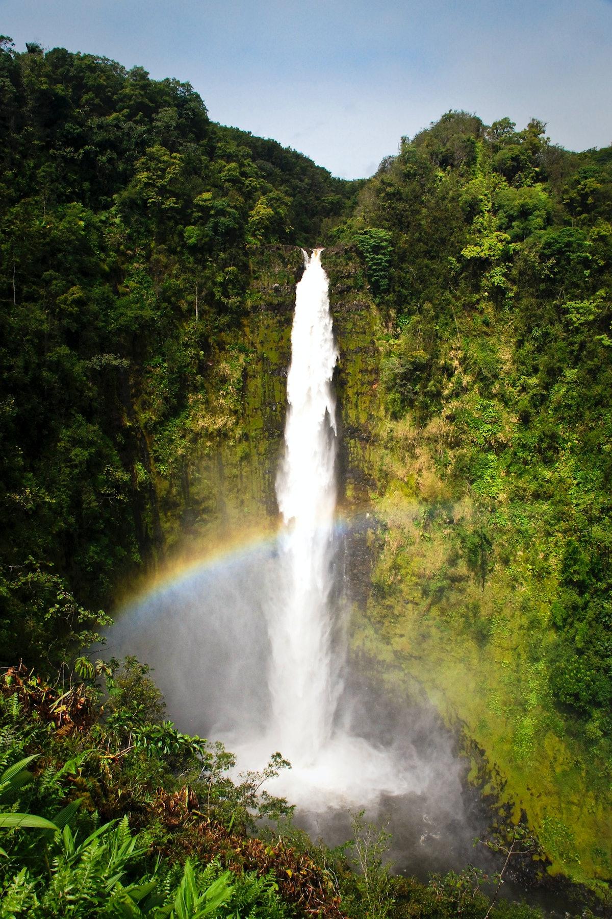 Best Vacation Spot: Akaka Falls on the Big Island of Hawaii