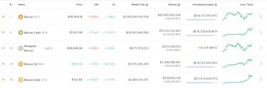 Bitcoin, Bitcoin Cash, Wrapped Bitcoin, Bitcoin SV, Bitcoin Gold