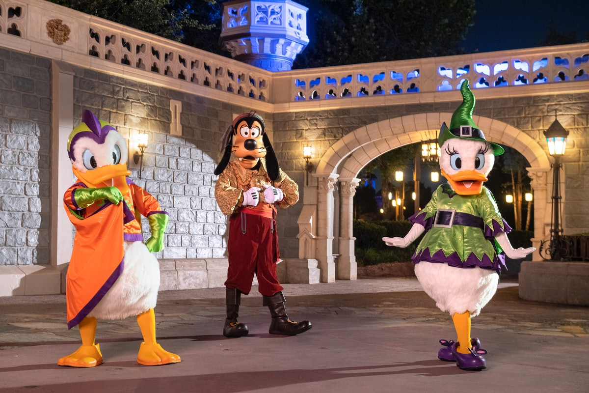 Here's what Boo Bash at Disney World is so you know what to expect.