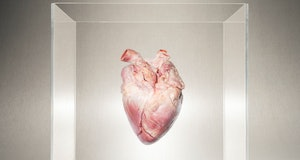 heart in box