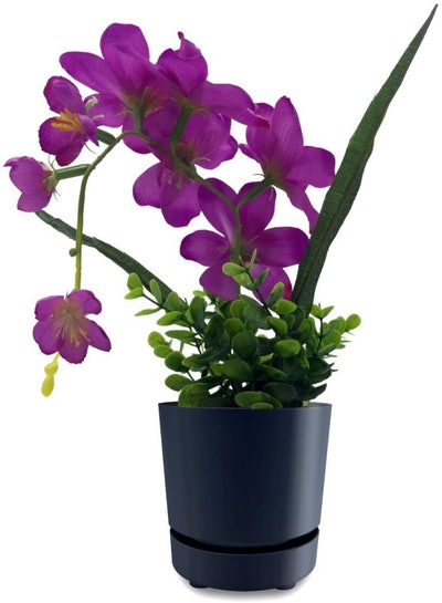 HBServices USA Self Watering Planter Pot