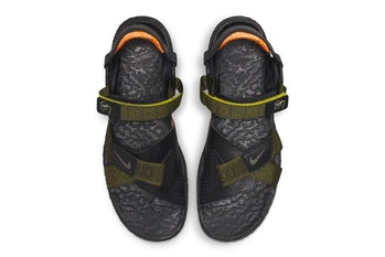 Nike ACG Sig Zane Air Deschutz