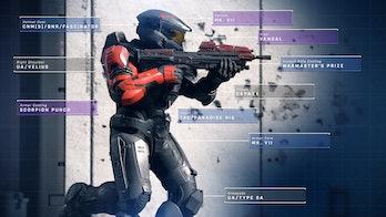halo infinite multiplayer customization