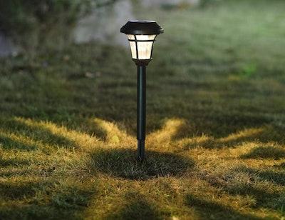 MAGGIFT Solar Pathway Lights (12-Pack)