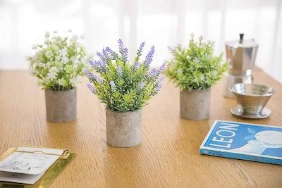Binnny Artificial Plants in Pots (Set of 3)