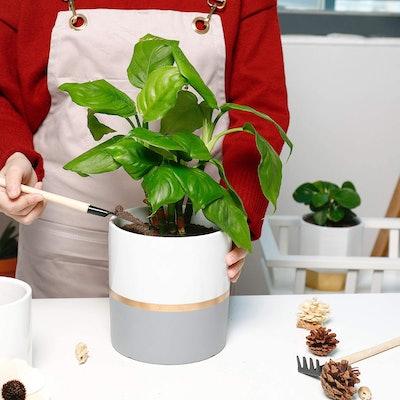 POTEY Ceramic Planter