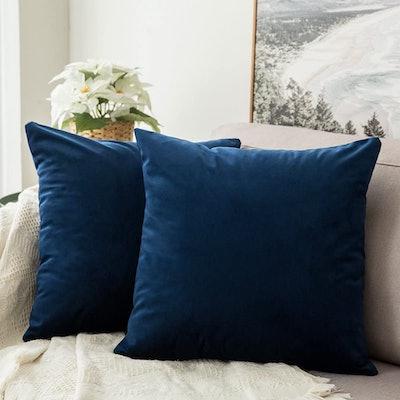MIULEE Velvet Decorative Square Throw Pillow (2-Pack)