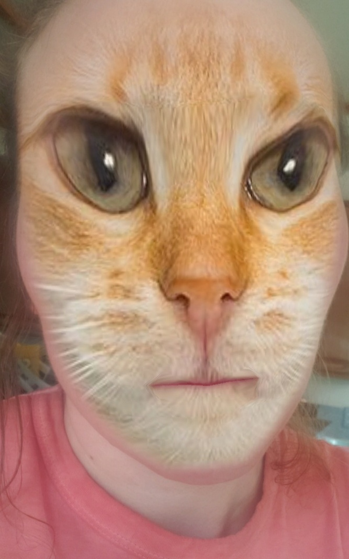 Here's how to get a cat face filter on Snapchat to get in on the fun.